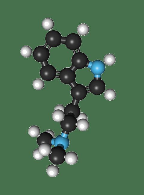 Representative example of Small Pharma DMT Molecule